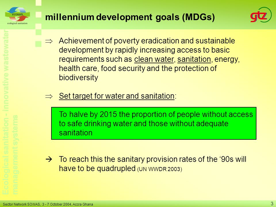 millennium development goals (MDGs)