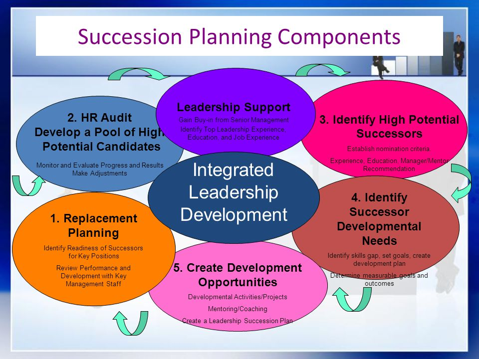 Succession Planning Components