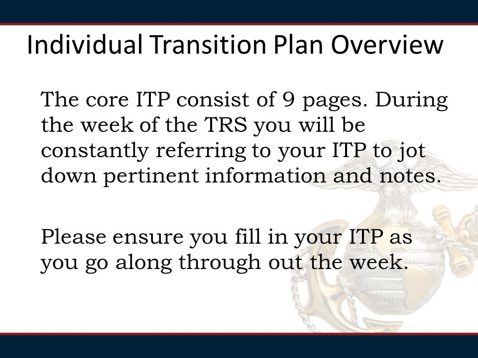 Individual Transition Plan Overview