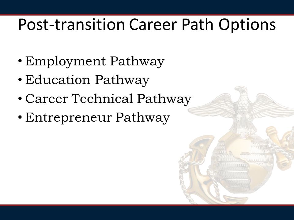 Post-transition Career Path Options