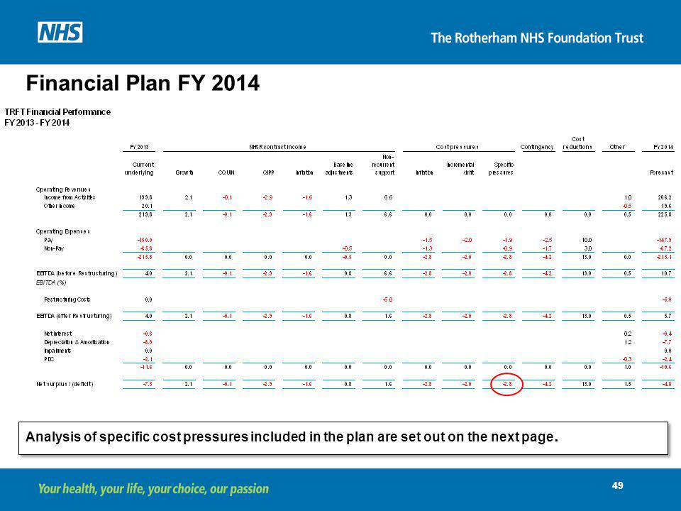 Financial Plan FY 2014 Analysis of specific cost pressures included in the plan are set out on the next page.