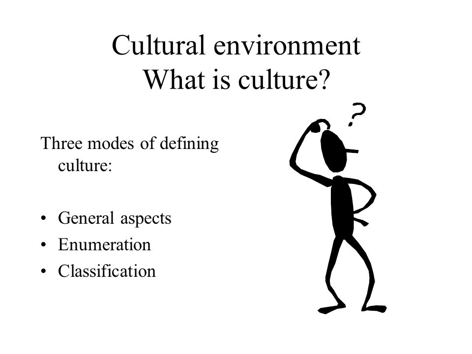 Cultural environment What is culture