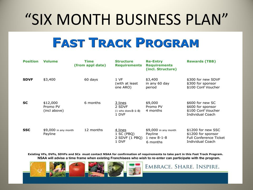 SIX MONTH BUSINESS PLAN
