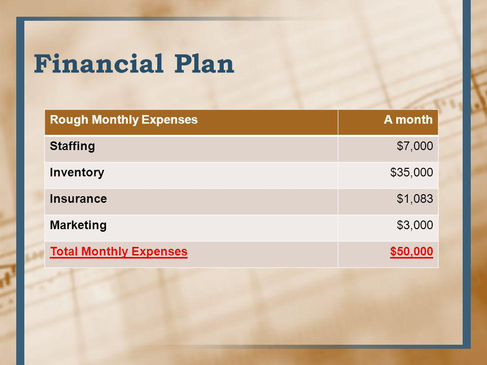 Financial Plan Rough Monthly Expenses A month Staffing $7,000