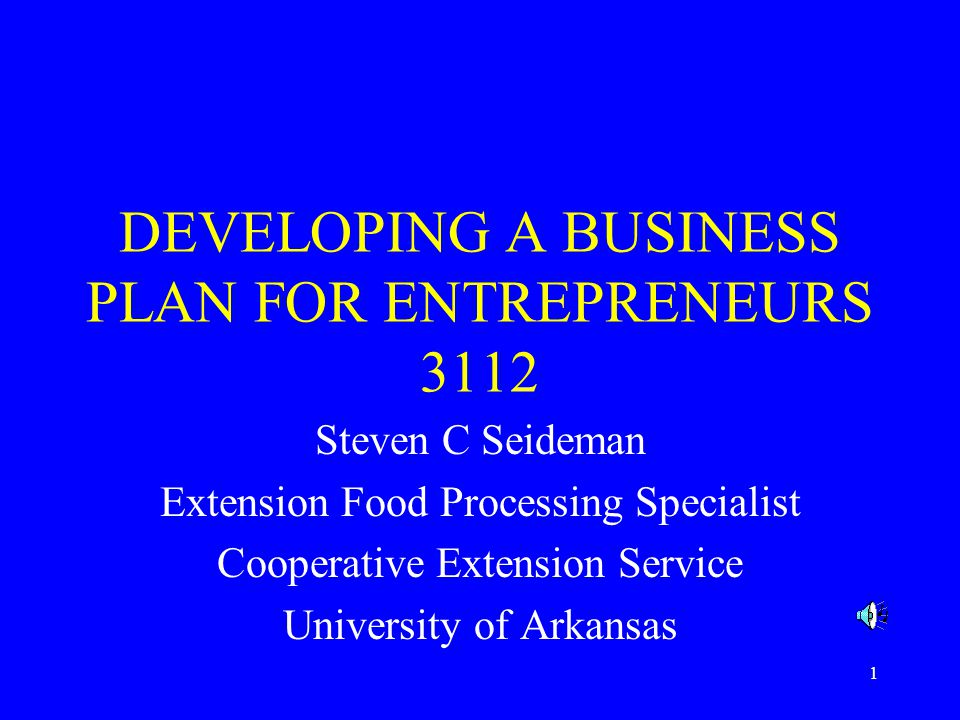 DEVELOPING A BUSINESS PLAN FOR ENTREPRENEURS 3112
