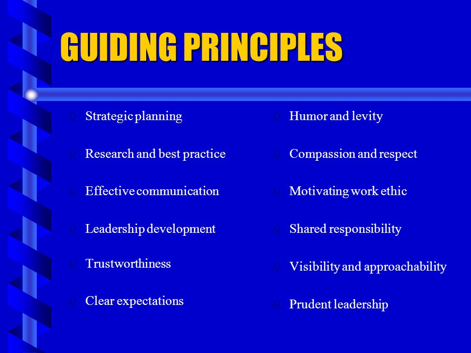 GUIDING PRINCIPLES Strategic planning Research and best practice