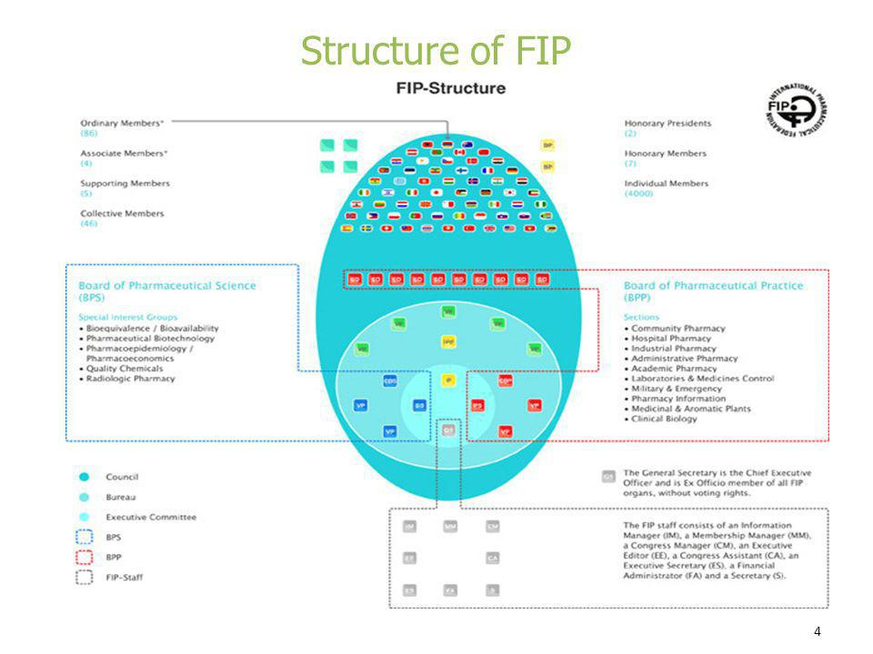 Structure of FIP