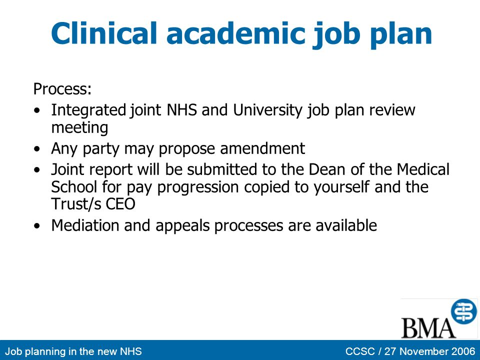 Clinical academic job plan