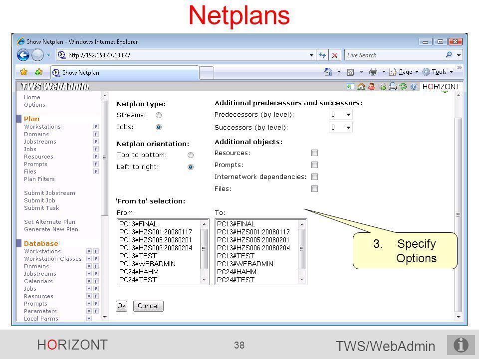 Netplans Specify Options