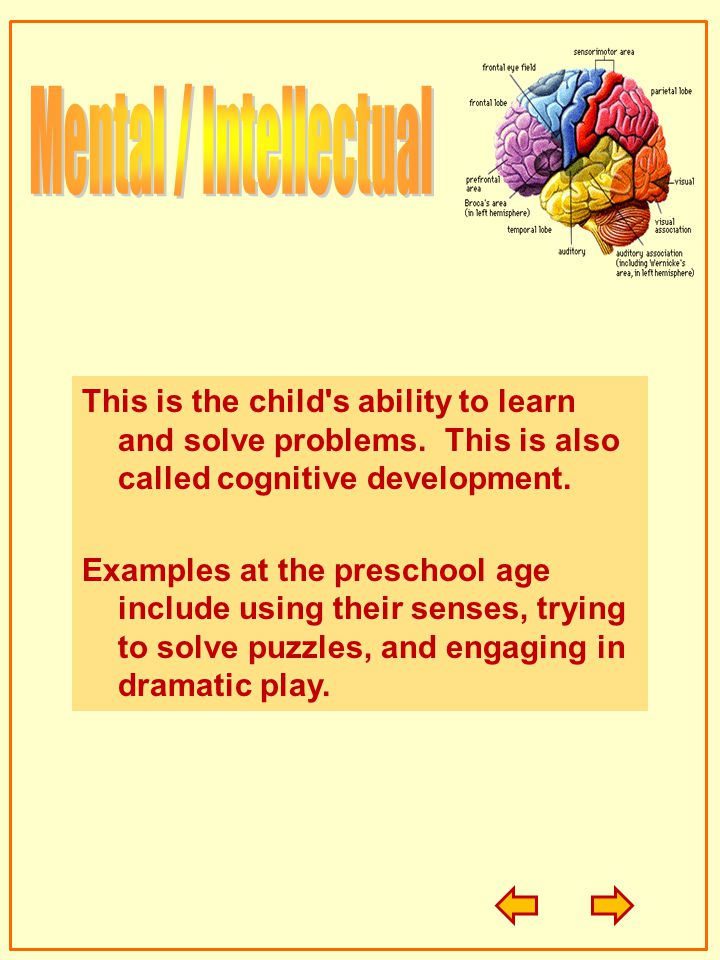 Mental / Intellectual This is the child s ability to learn and solve problems. This is also called cognitive development.