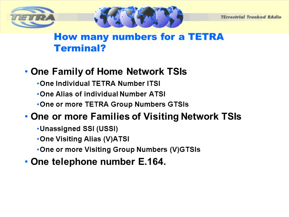 How many numbers for a TETRA Terminal