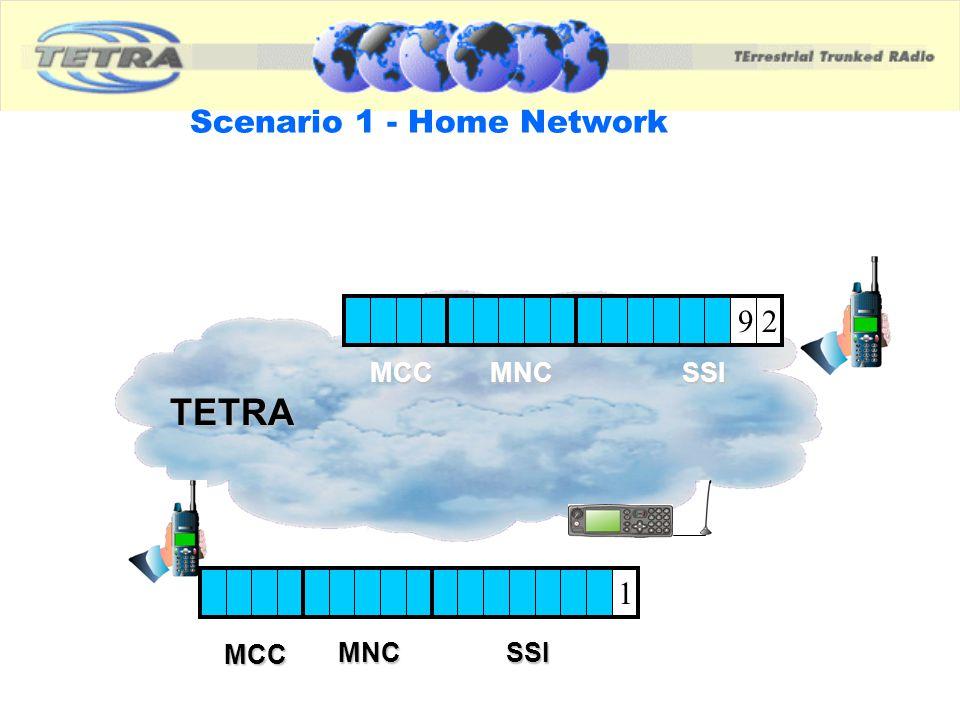 Scenario 1 - Home Network
