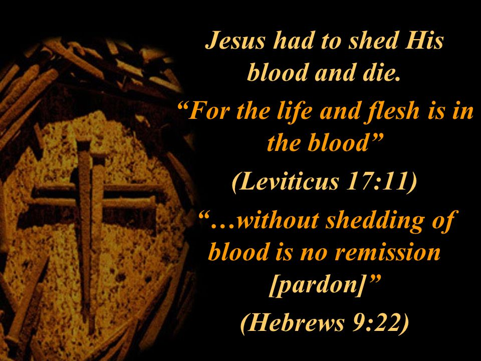 Jesus had to shed His blood and die.