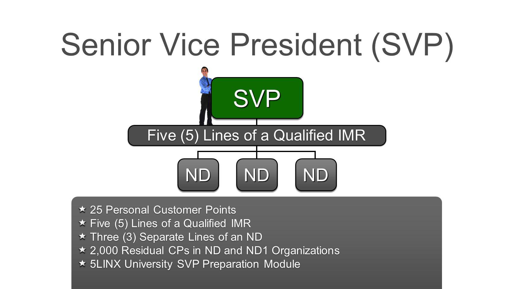 Senior Vice President (SVP)
