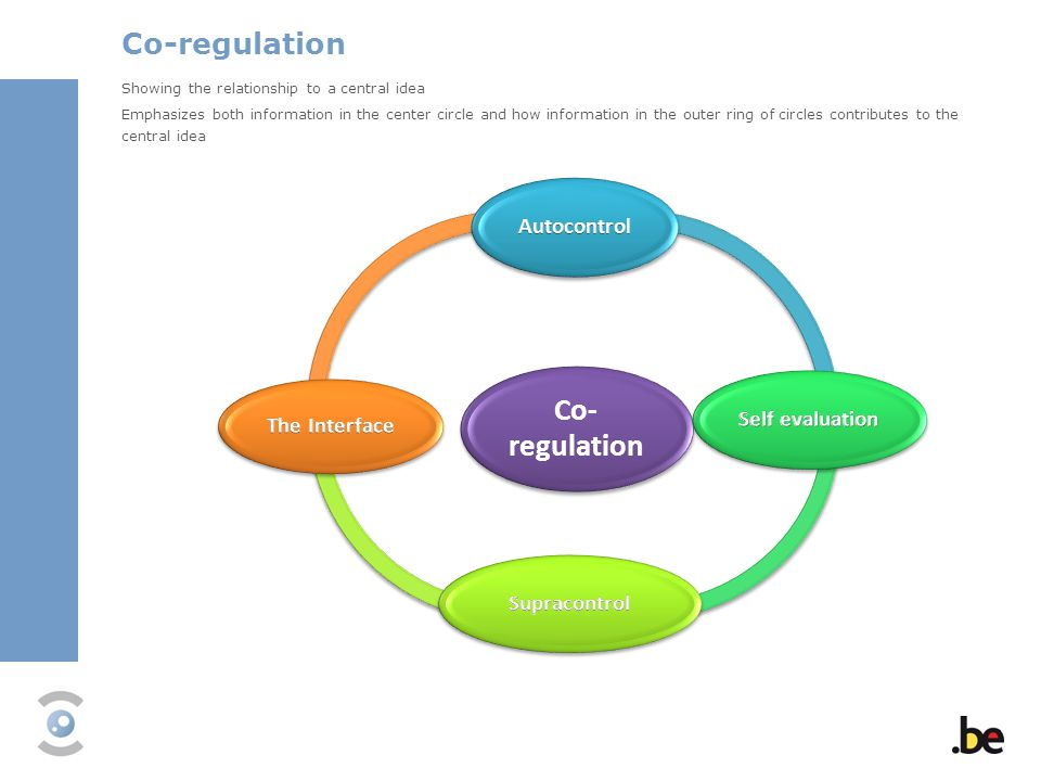 Co-regulation Co-regulation Autocontrol Self evaluation The Interface