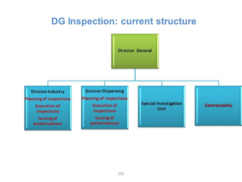 DG Inspection: current structure