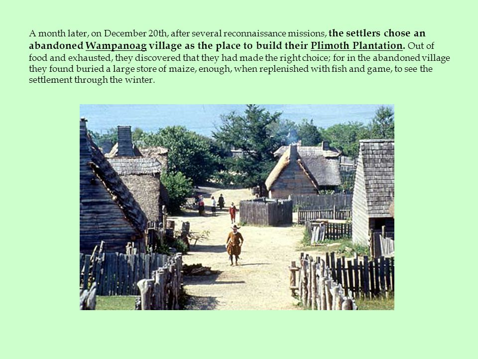 A month later, on December 20th, after several reconnaissance missions, the settlers chose an abandoned Wampanoag village as the place to build their Plimoth Plantation.