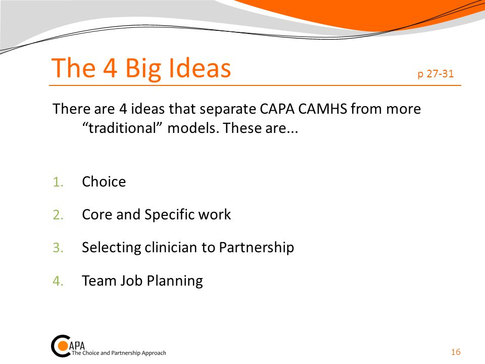 The 4 Big Ideas p 27-31 There are 4 ideas that separate CAPA CAMHS from more traditional models. These are...