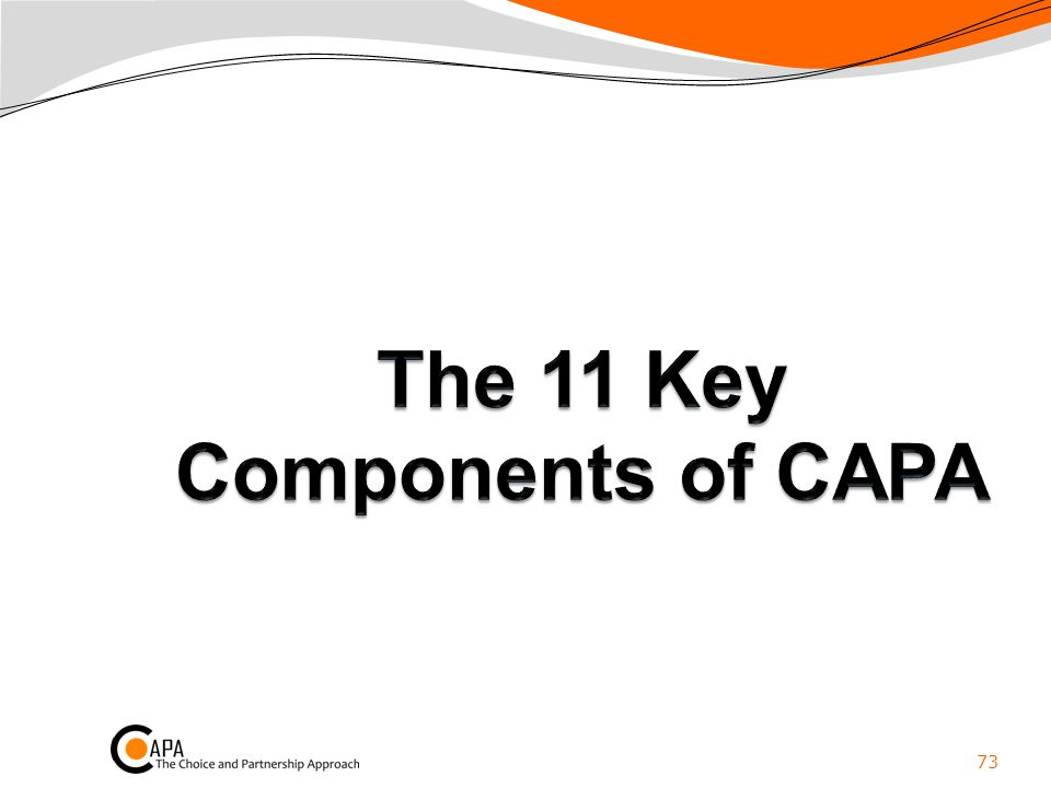 The 11 Key Components of CAPA