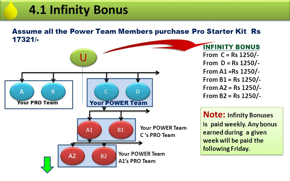 4.1 Infinity Bonus Assume all the Power Team Members purchase Pro Starter Kit Rs 17321/- INFINITY BONUS.