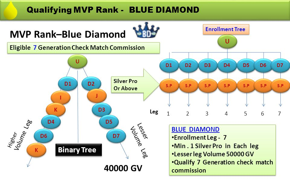 MVP Rank–Blue Diamond 40000 GV Qualifying MVP Rank - BLUE DIAMOND
