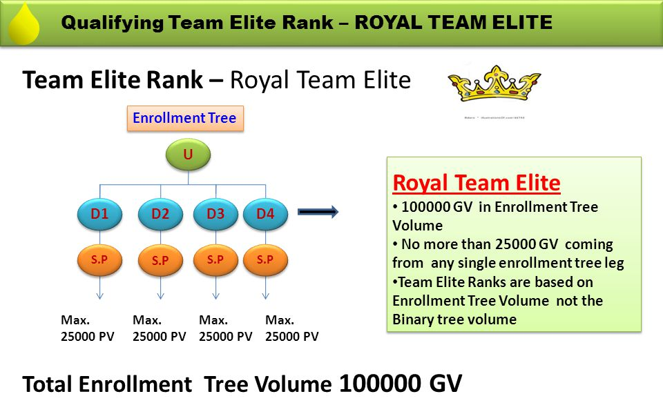 Team Elite Rank – Royal Team Elite