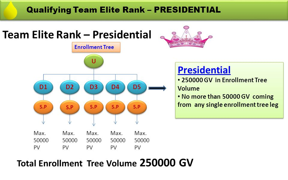 Team Elite Rank – Presidential