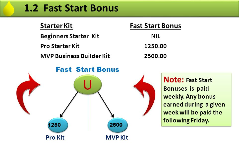 1.2 Fast Start Bonus Starter Kit. Fast Start Bonus. Beginners Starter Kit. NIL. Pro Starter Kit.