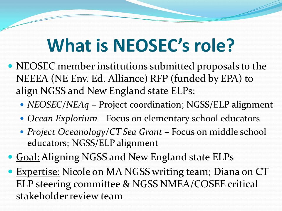 What is NEOSEC's role