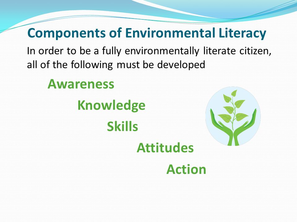 Components of Environmental Literacy