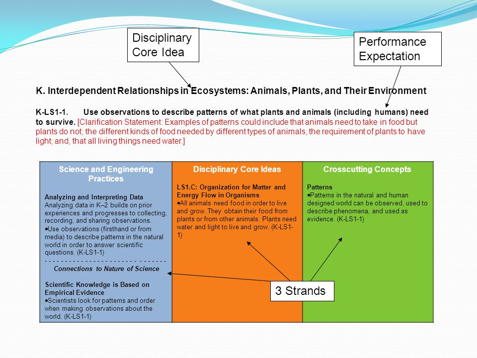 Disciplinary Core Idea Performance Expectation