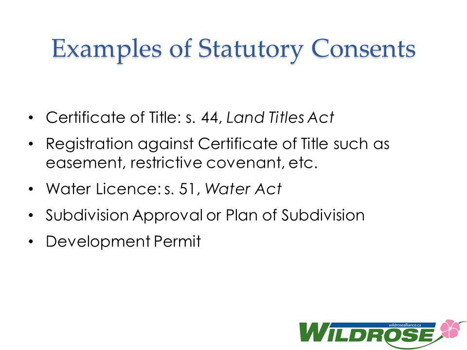 Examples of Statutory Consents