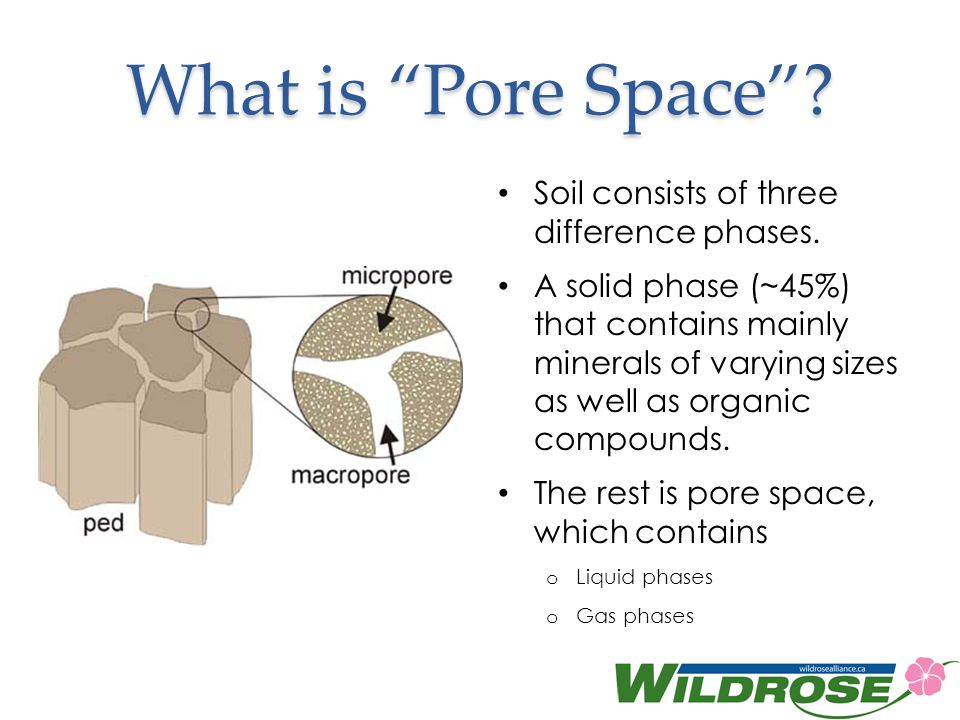 What is Pore Space Soil consists of three difference phases.