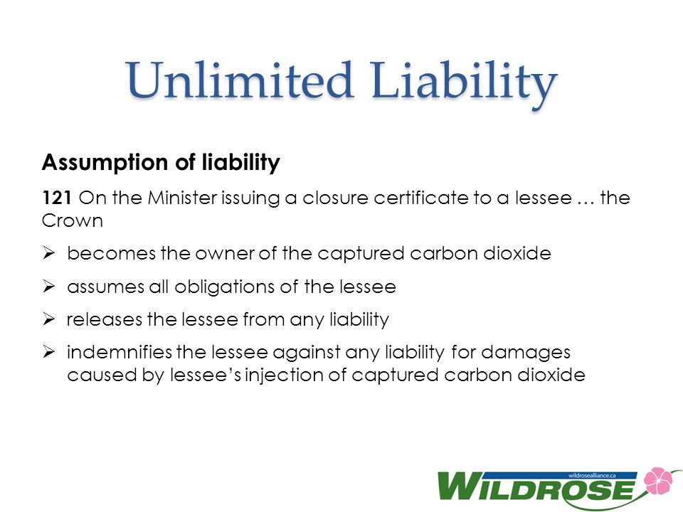 Unlimited Liability Assumption of liability
