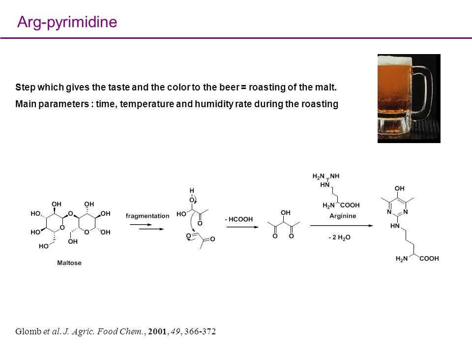Arg-pyrimidine Step which gives the taste and the color to the beer = roasting of the malt.
