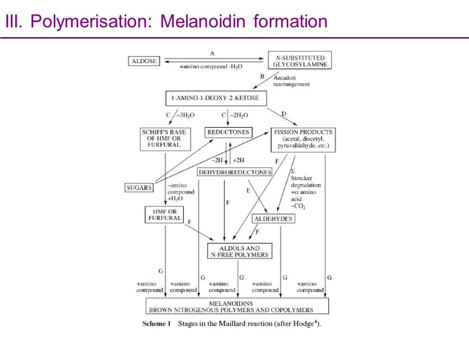 III. Polymerisation: Melanoidin formation