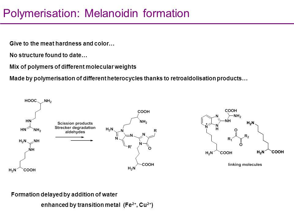 Polymerisation: Melanoidin formation