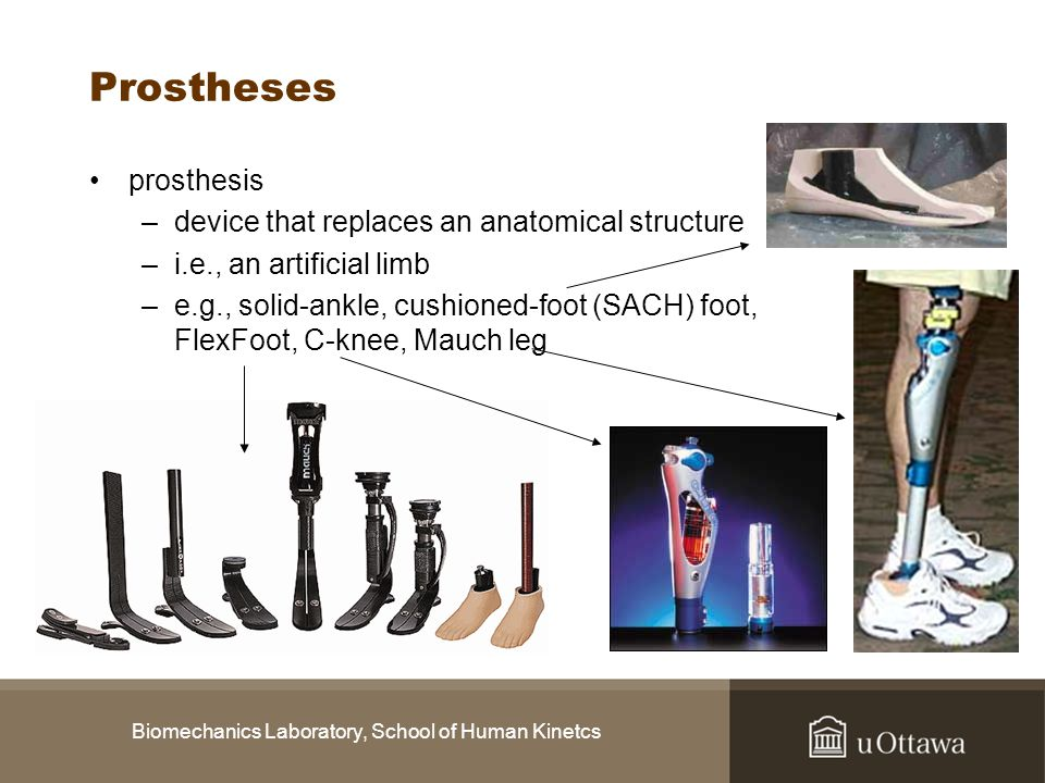 Biomechanics Laboratory, School of Human Kinetcs