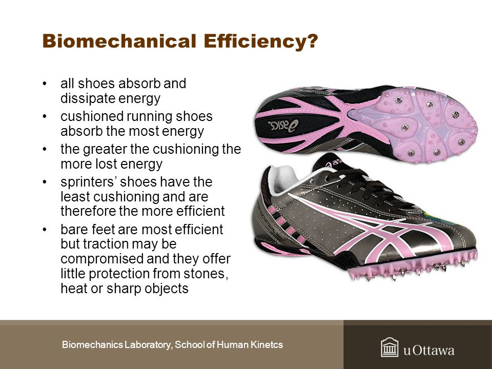 Biomechanical Efficiency