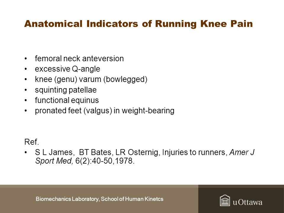 Anatomical Indicators of Running Knee Pain