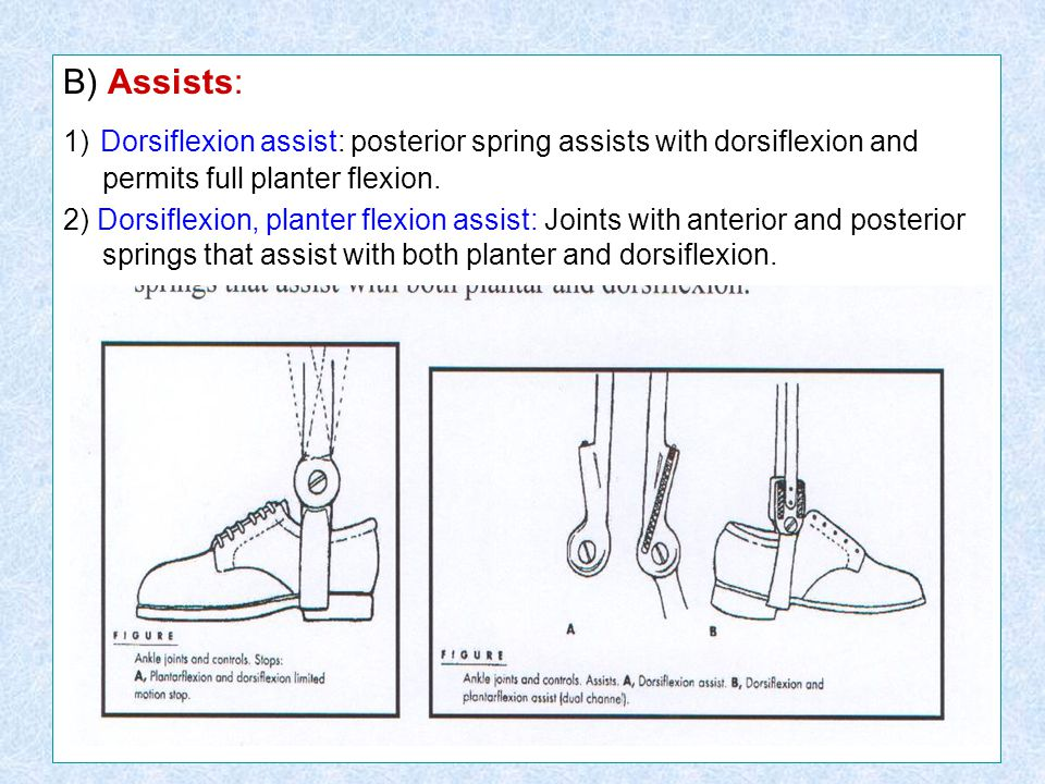 B) Assists: 1) Dorsiflexion assist: posterior spring assists with dorsiflexion and permits full planter flexion.