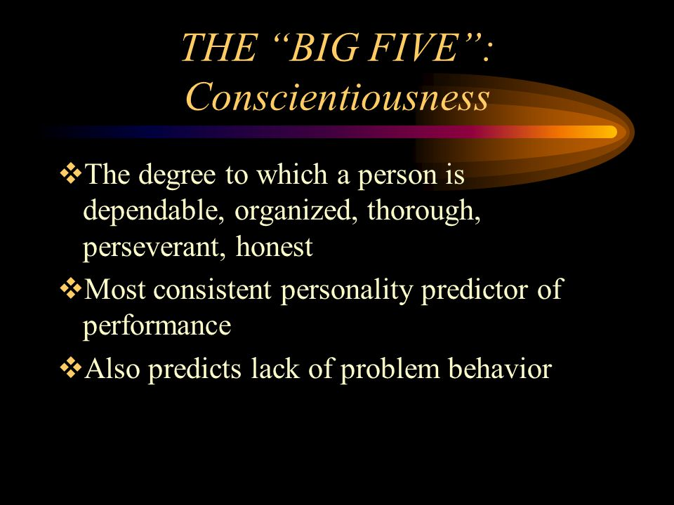 THE BIG FIVE : Conscientiousness