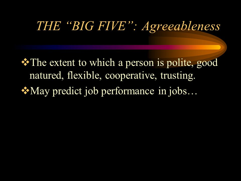 THE BIG FIVE : Agreeableness