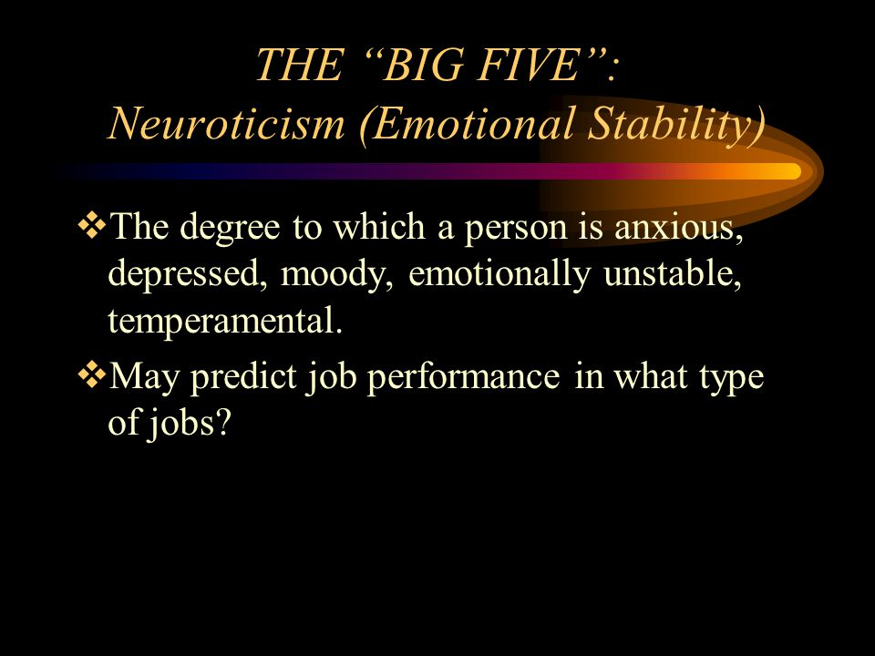 THE BIG FIVE : Neuroticism (Emotional Stability)