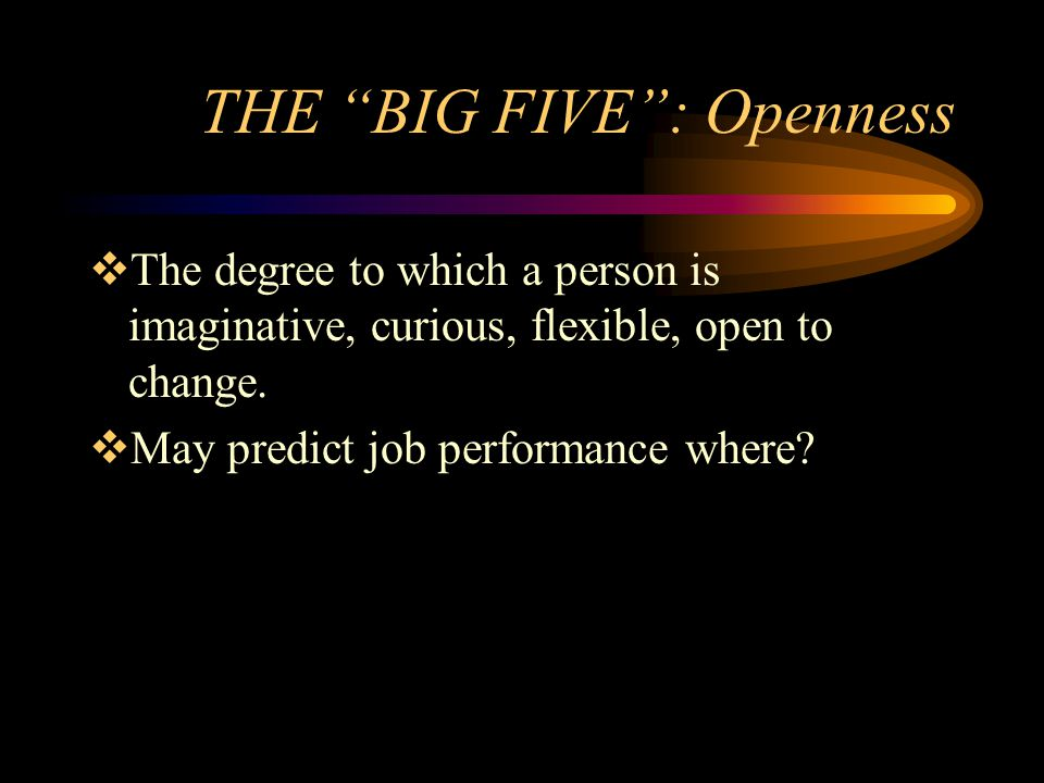 THE BIG FIVE : Openness