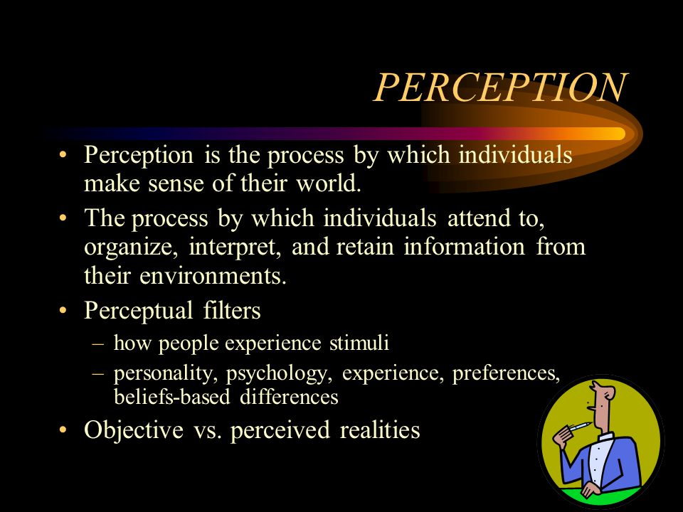 PERCEPTION Perception is the process by which individuals make sense of their world.