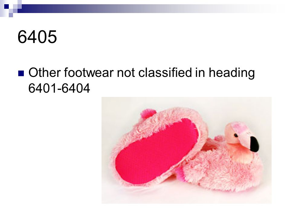 6405 Other footwear not classified in heading