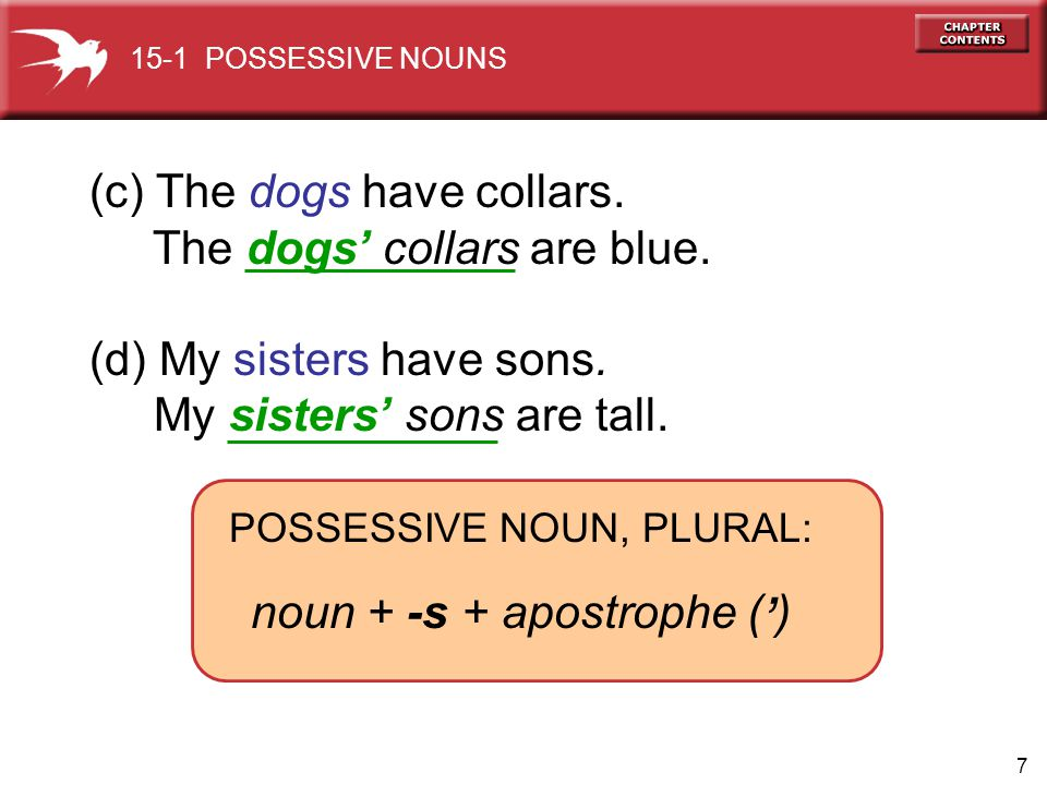 ' (c) The dogs have collars. The dogs' collars are blue.