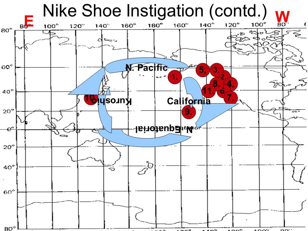 Nike Shoe Instigation (contd.)