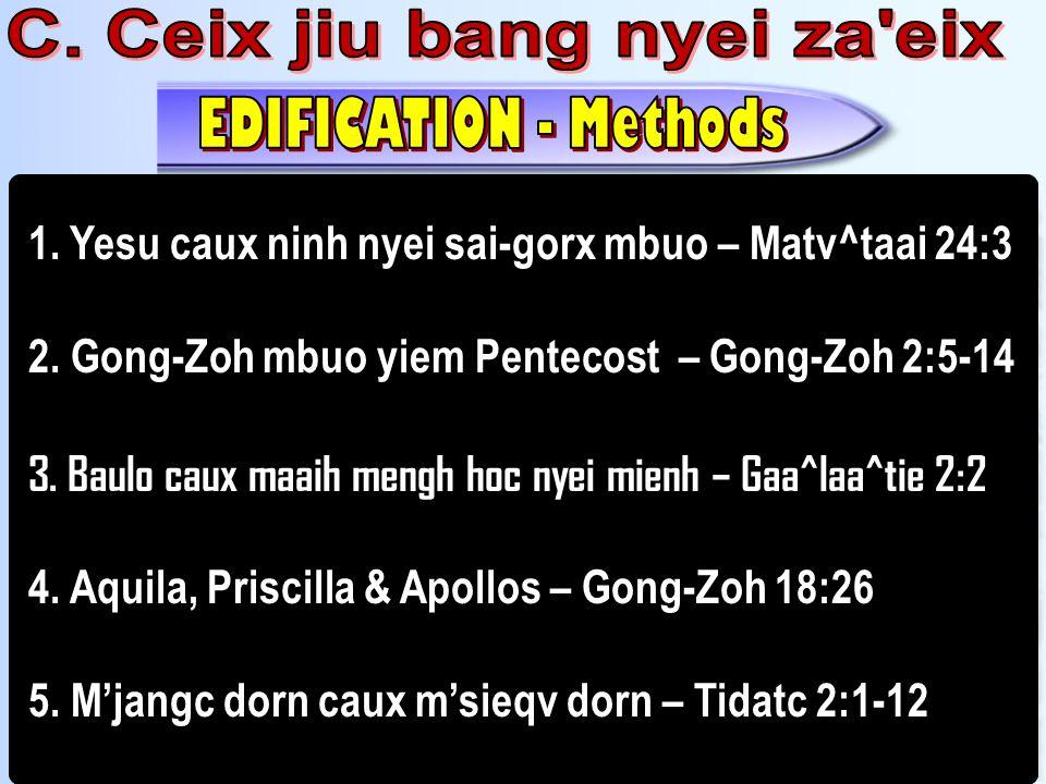 C. Ceix jiu bang nyei za eix
